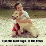 Diabetic Alert Dogs | In The News….